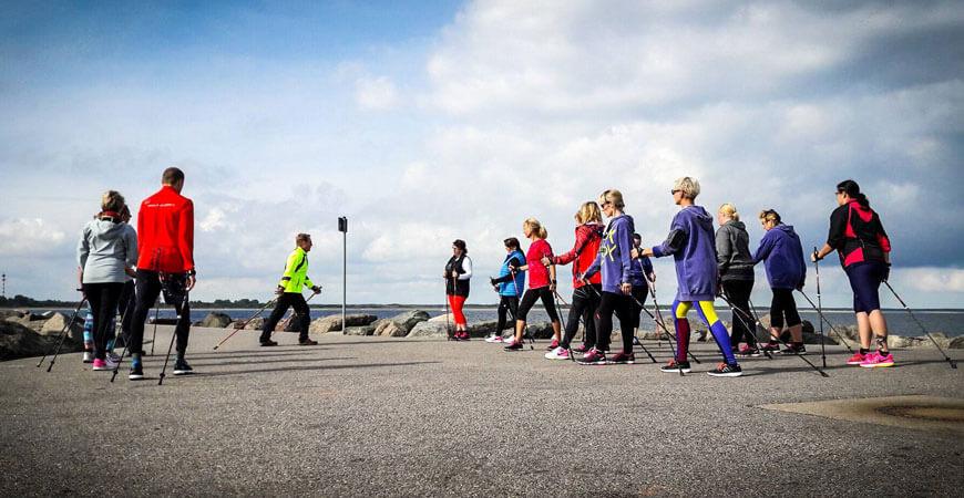 Скандинавская ходьба тренировки